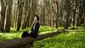 Laurie Wayburn finds both inspiration and solace in these protected wood- lands, within walking distance of her San Francisco office.