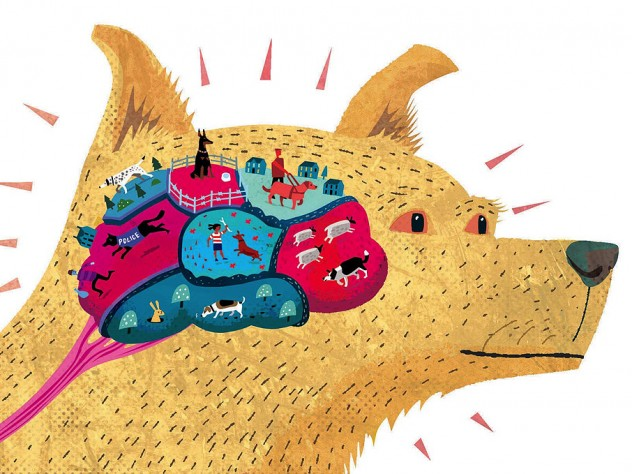 Illustration of a dog with a brain made up of different colorful regions depicting skills such as hunting and herding
