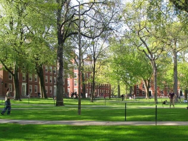 Photograph of Harvard Yard