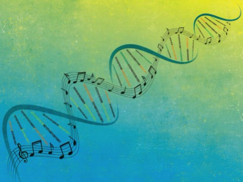 An evocative illustration that incorporates musical notation into the familiar double helix of DNA