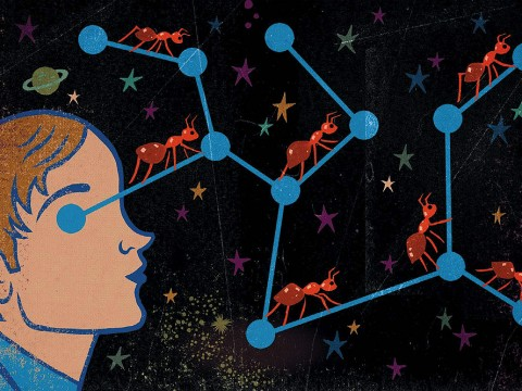 Illustration of a man looking at constellations with ants traversing the shortest distance between the stars in the constellation.