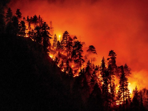 A California hillside burns